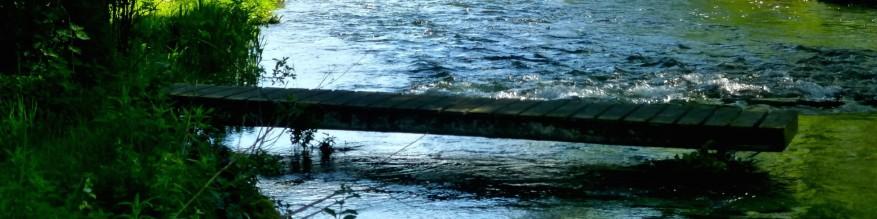 cropped-water2.jpg